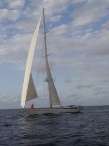 DSC01955